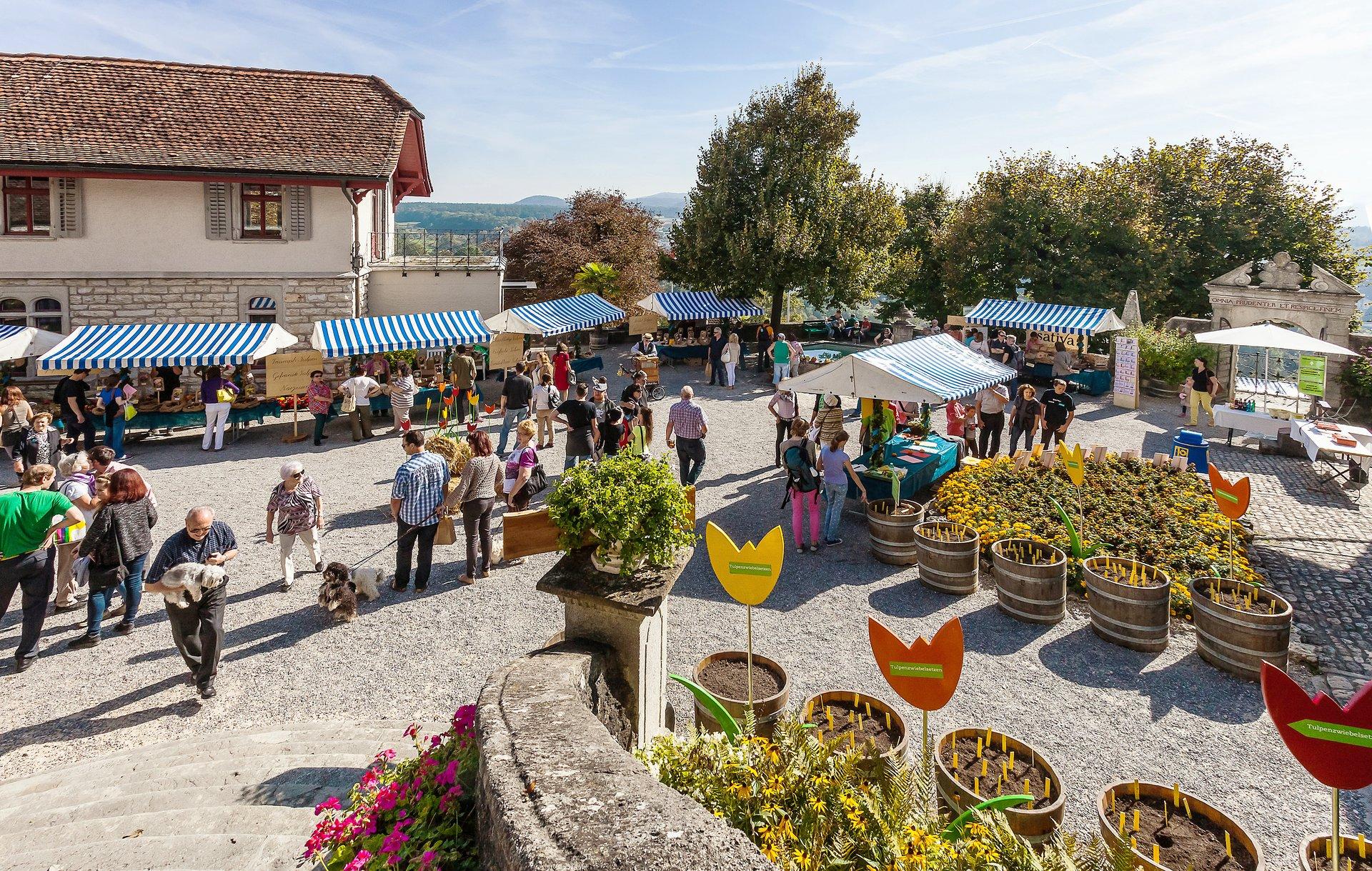 Genussmarkt im Schloss Wildegg – Produkte nach Slow Food Kritierien produziert